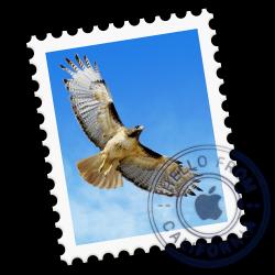 10 atajos de teclado útiles para la aplicación Mail en Mac