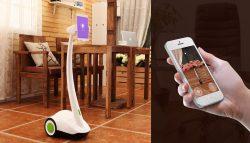 Padbot convierte tu iPad en un robot de telepresencia