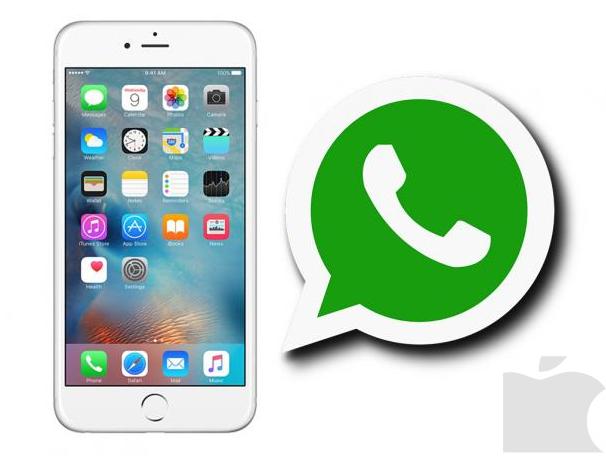 Whatsapp permitirá la integración de vídeos de Youtube en su aplicación