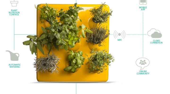 Optimus Garden la solución tecnológica para tu huerto urbano